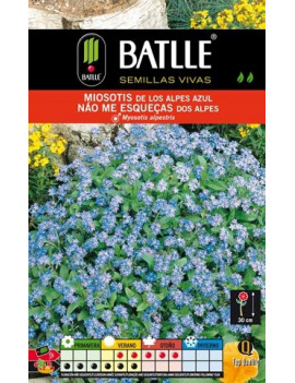 Semillas Miosotis de los Alpes azul (Myosotis Alpestris)