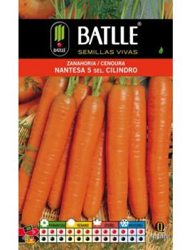 Semilla Zanahoria Nantesa