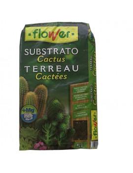 Susbtrato cactus 5L