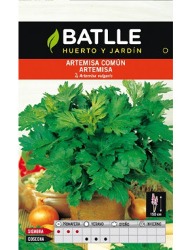 Semillas Artemisa Comun