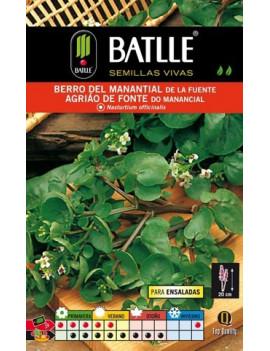 BERRO DEL MANANTIAL DE LA...